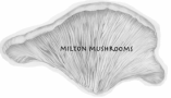 Milton Mushrooms